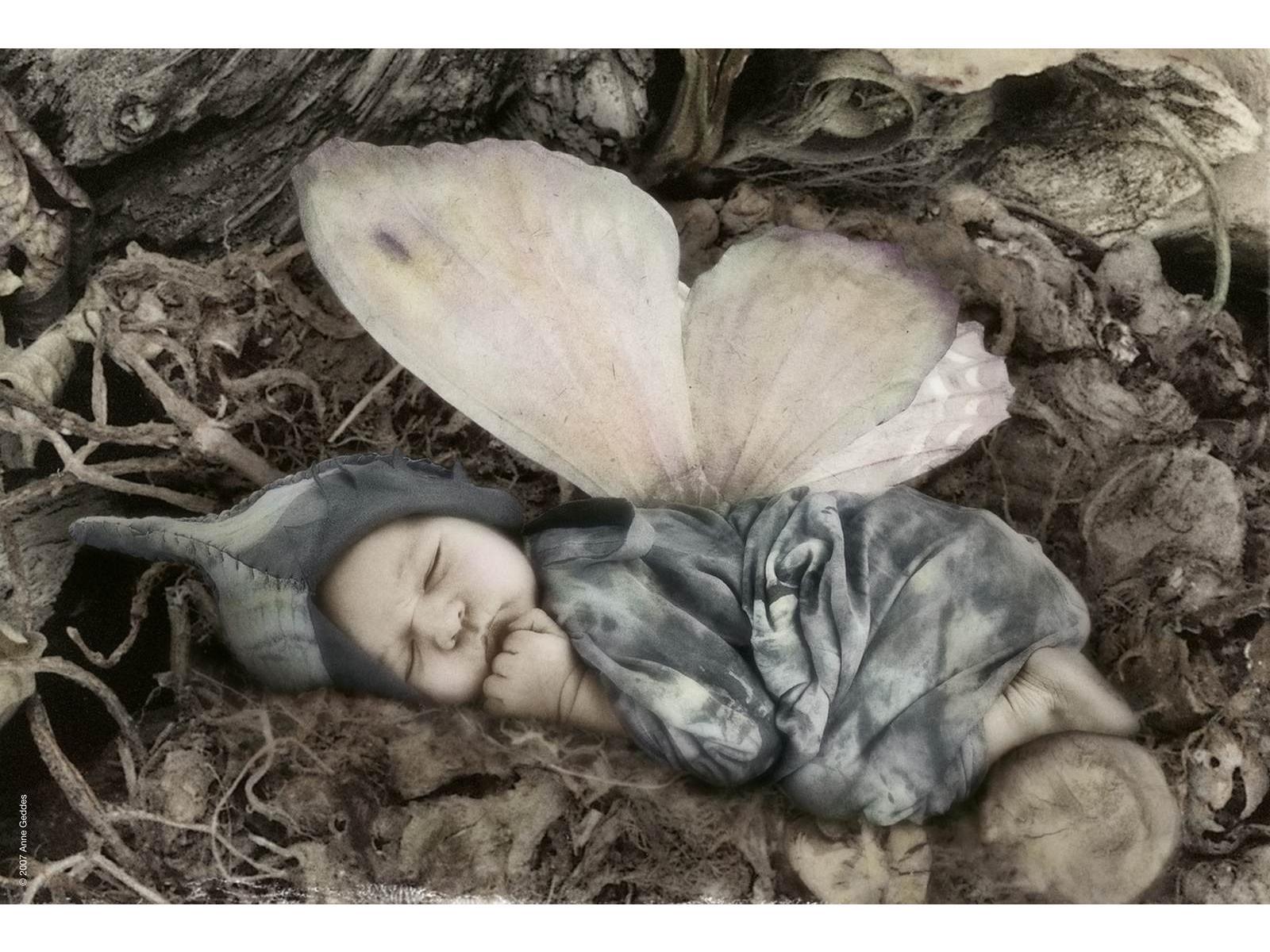 Les non-dits dans Moi schmidt-58907-puzzle-500-pieces-papillon-endormi-anne-geddes
